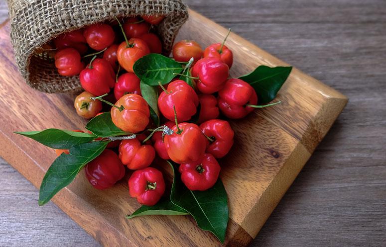 Nobre de Frutas Fruechte-titelbilder-acerola